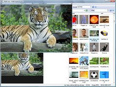 P3DO Organizer Image viewer, Photo 3D viewer with thumbnails